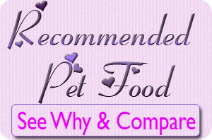 recommended pet food for yorkie puppies